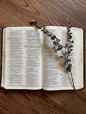 Scripture-Based.png