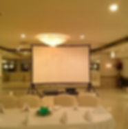West Indian Alliance DJ Projection Screen