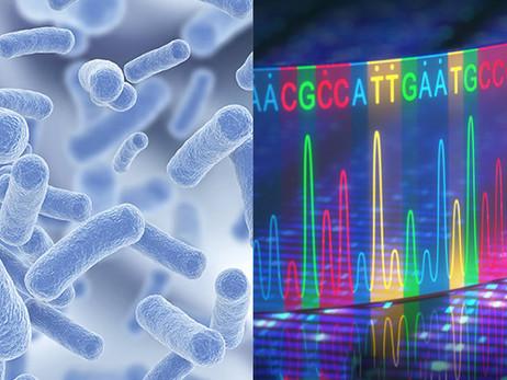El examen genético