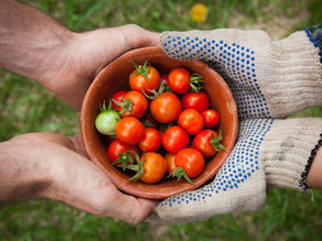 Serving your Family and Community with  a Backyard Garden