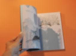 livre4.jpg