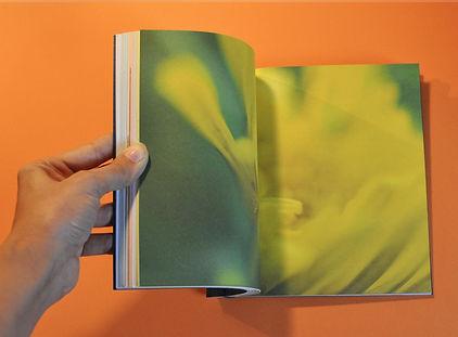 livre6.jpg