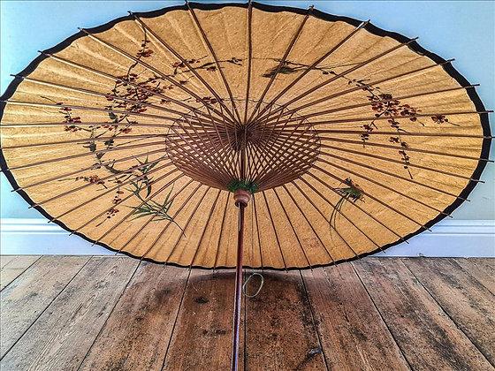 Asian umbrella