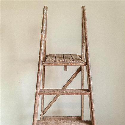 Totnes ladder