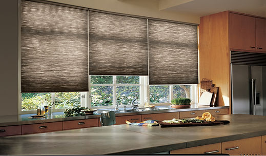 Hunter Douglas Duette Shades Carhart Interior Designs