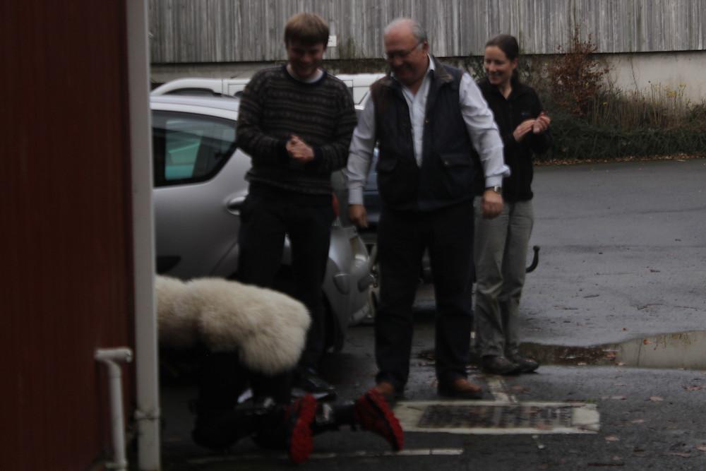 Miranda Whall crawling with sheep fleece pwllpeiran