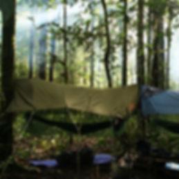 Layla Curtis fieldwork in Borneo rainforest