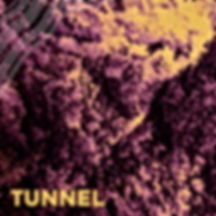Michigander Tunnel.jpg