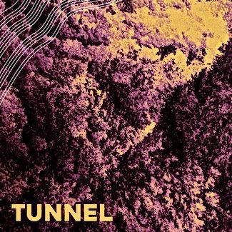 Michigander Tunnel.jpg