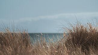 beach_1.1.1.jpg