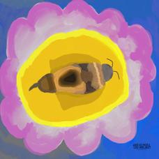 La siesta de la abeja II - Simona Conteras