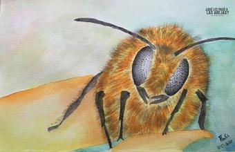 Retrato de una abeja - Thalía Iglesias -