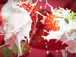 strawberry_1.1.2.png