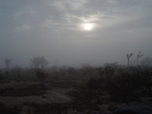 Pronunciamiento por la defensa de nuestro territorio Catorce, San Luis Potosí