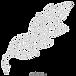 kisspng-bay-laurel-drawing-leaf-branch-c