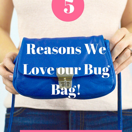 Top 5 Reason to Love our Bug Bag!