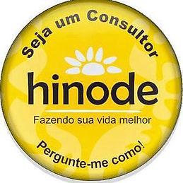 Consultor-hinode.jpg