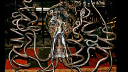 octopus bottle holder