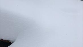 大雪!大変だ~