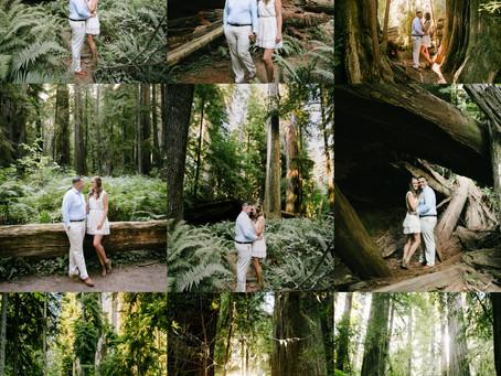 Engaged on the Oregon Coast