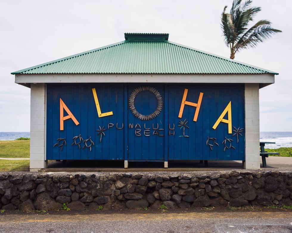 Aloha Hut 8x10.jpg