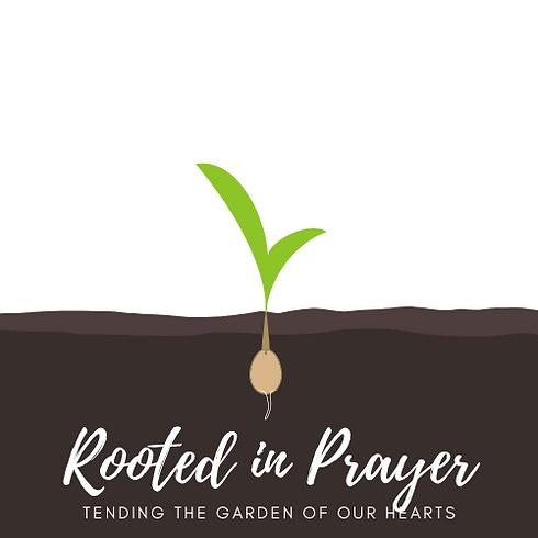 Root Logo.png