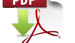 Remote working PDF Fix