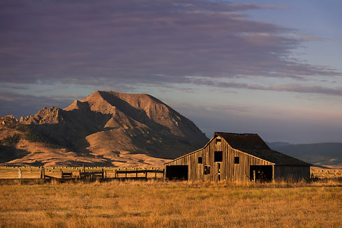 Old barn in front of Bear Butte from Nin
