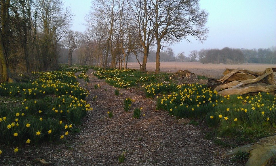 The Serpentine Walk in early spring