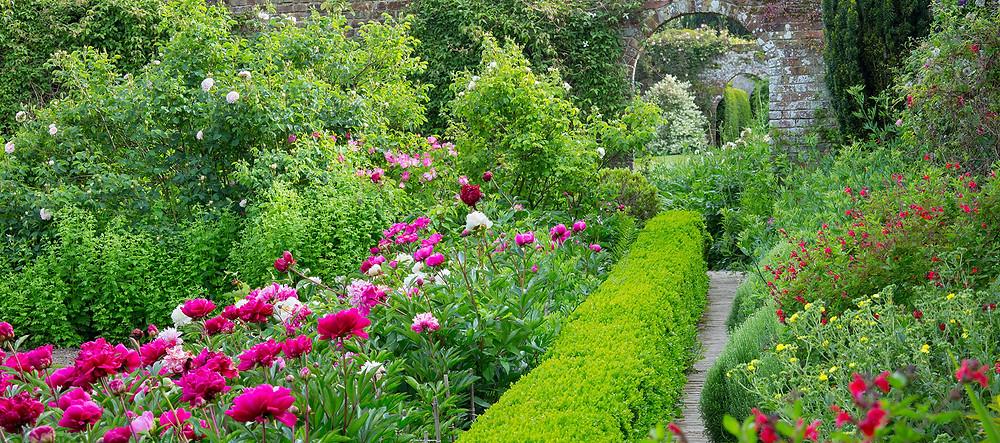 Goodnestone Park Gardens - Photo credit Goodnestone Park Gardens Website