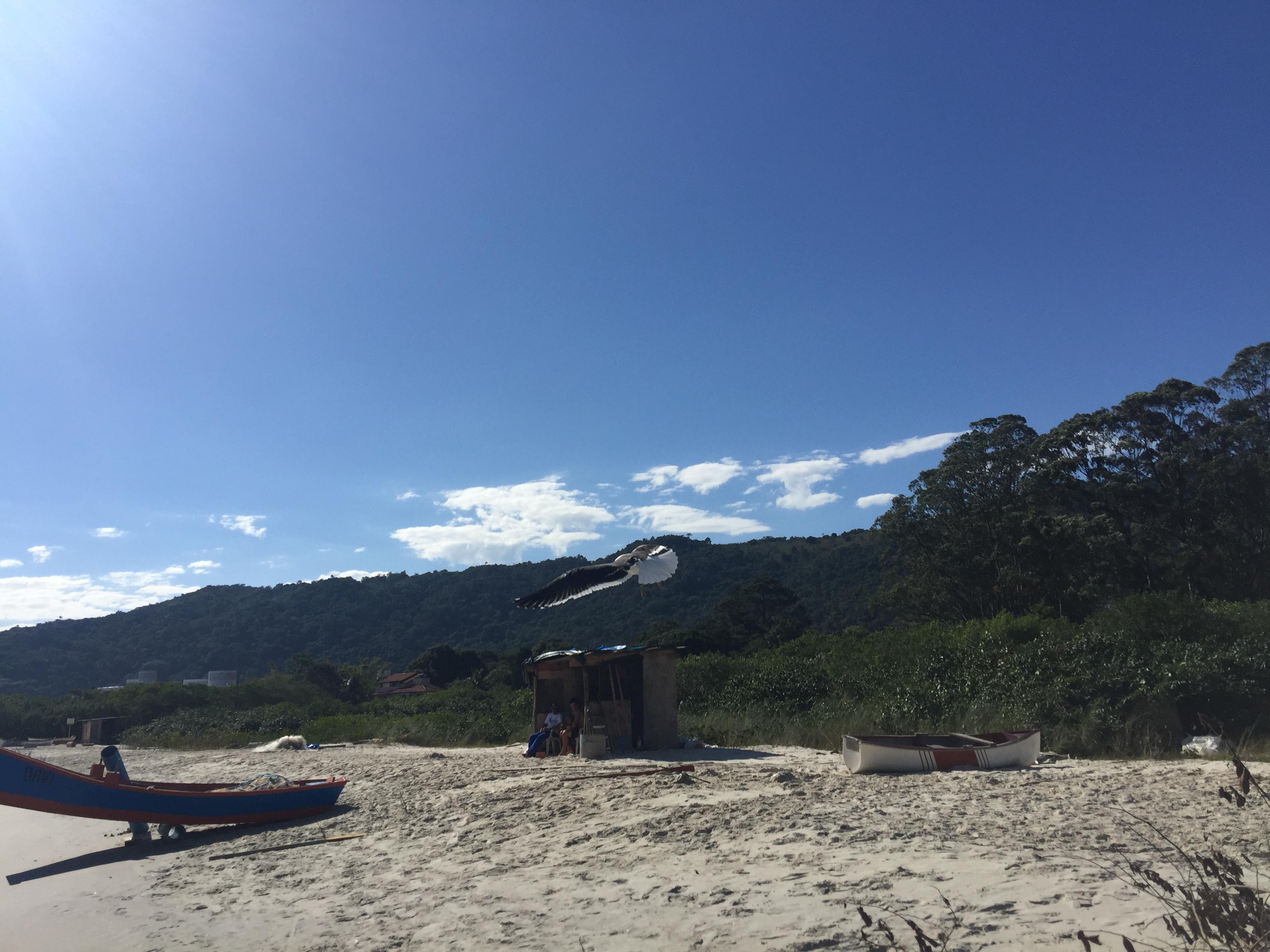 Praia Cachoeira do Bom Jesus
