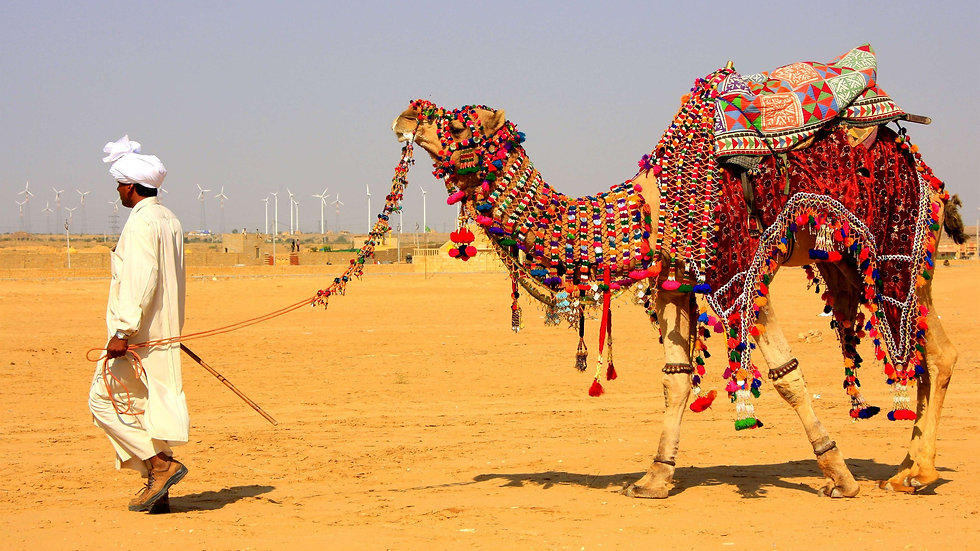 Jaisalmer Safari.jpg