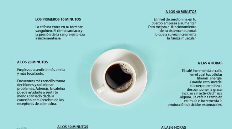 ¿Qué le pasa a nuestro cuerpo después de tomar café?
