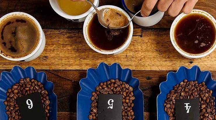 Guía para principiantes: Cómo catar café en casa
