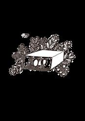 soap logo.png