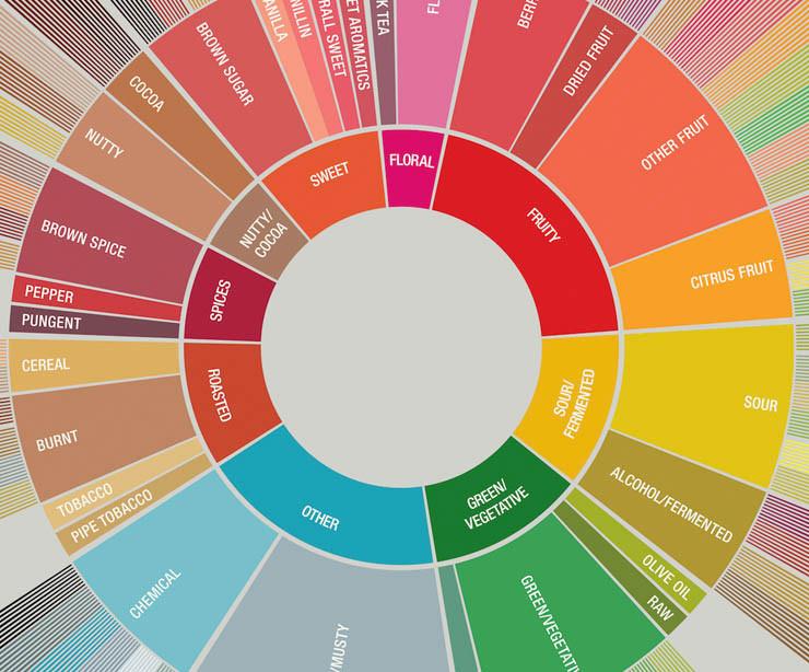 rueda de sabores Porte café de especialidad