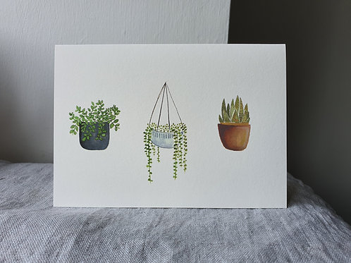 House Plants Water Colour Greeting Card (Blank Inside)
