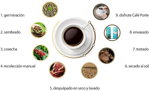 trazabilidad completa porte café de especialidad
