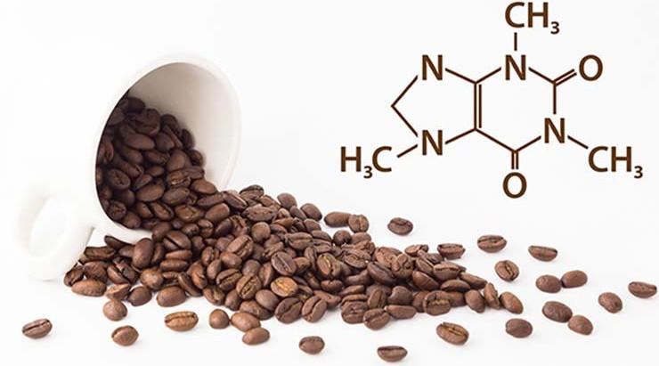 Back to Basics: Empecemos por el Principio... Qué es la Cafeína?