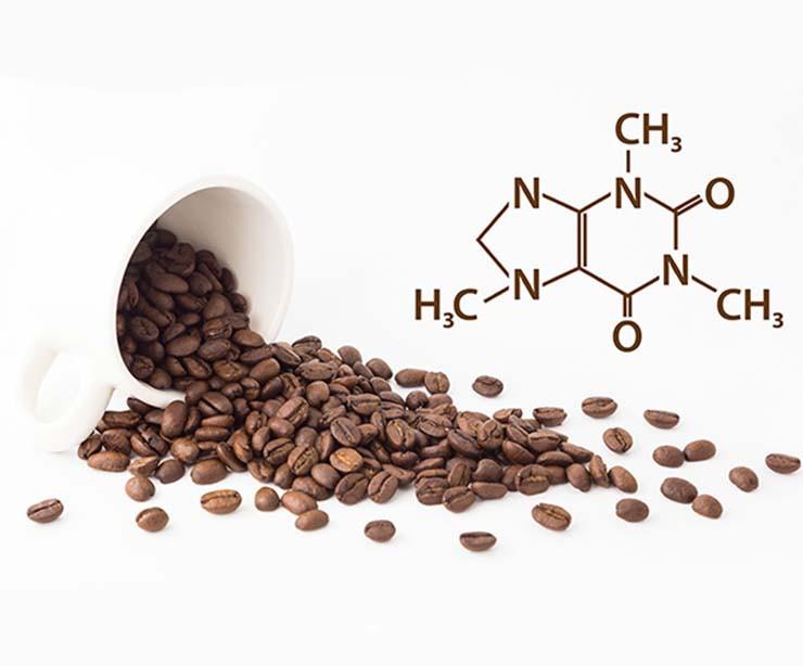 composición química cafeína