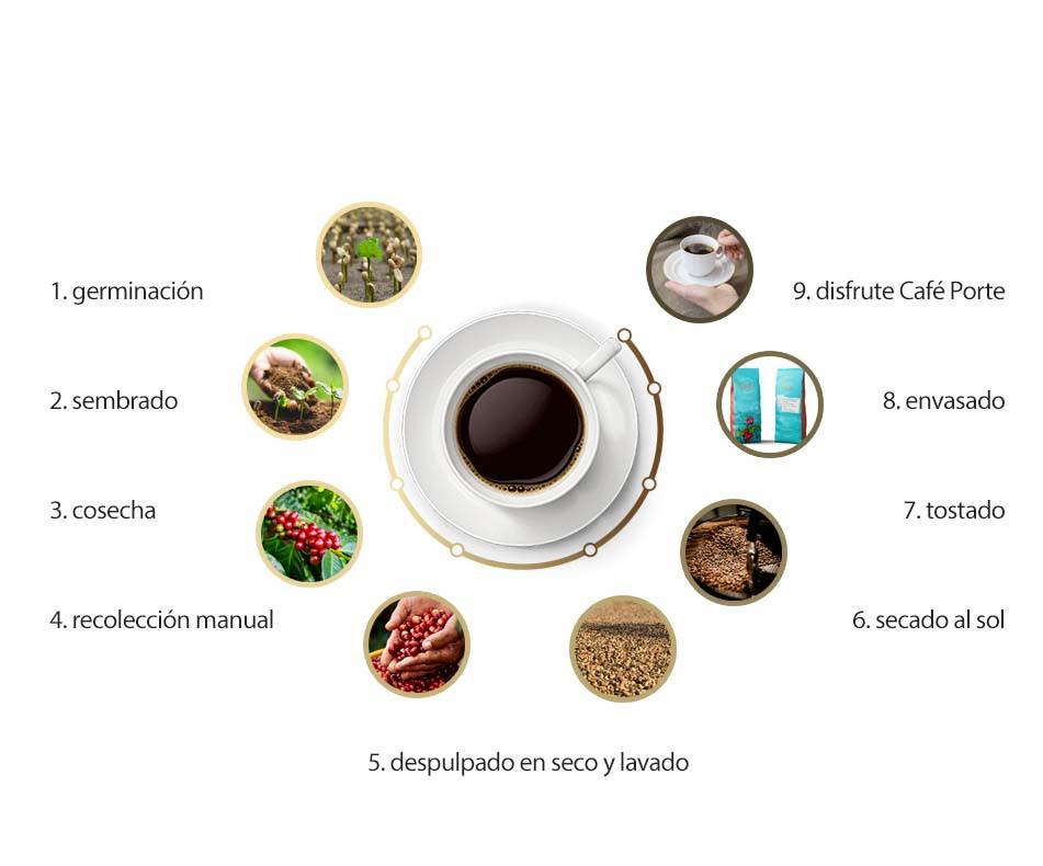 infografía trazabilidad café Porte