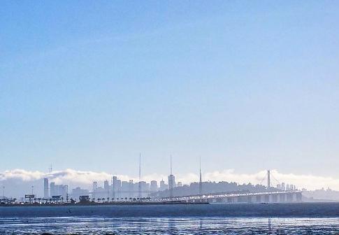 SF Haze
