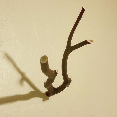 Manzanita Hook