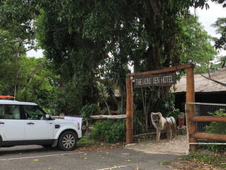 The Lions Den, far north Qld icon