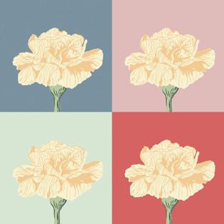 Carnation Repeat