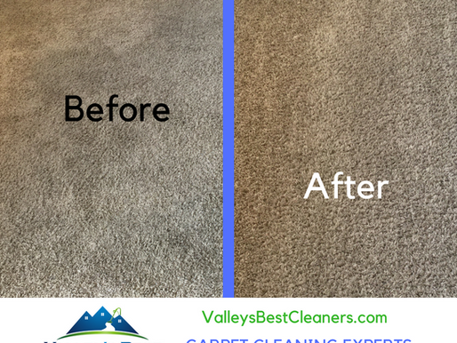 You will love your carpet again!