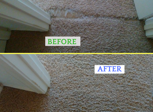 Save money by getting your carpet professionally repaired and cleaned instead of replaced