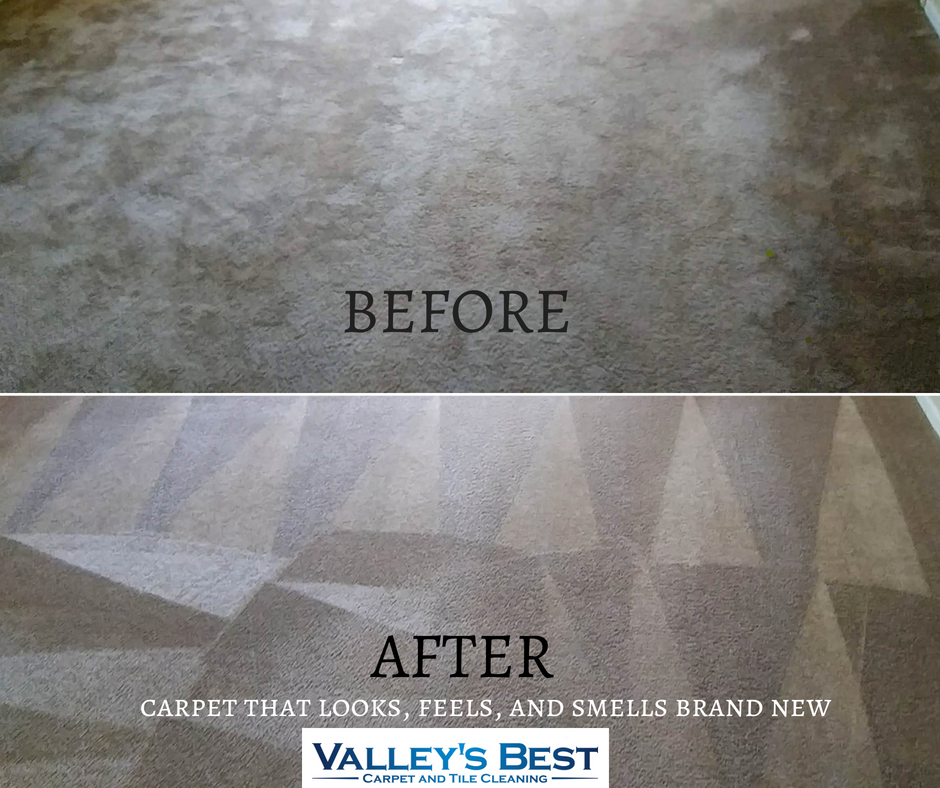 Expert carpet cleaning!  www.valleysbestcleaners.com
