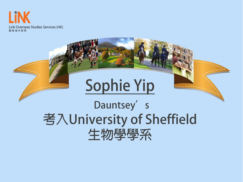 Sophie Yip_A Level.jpg