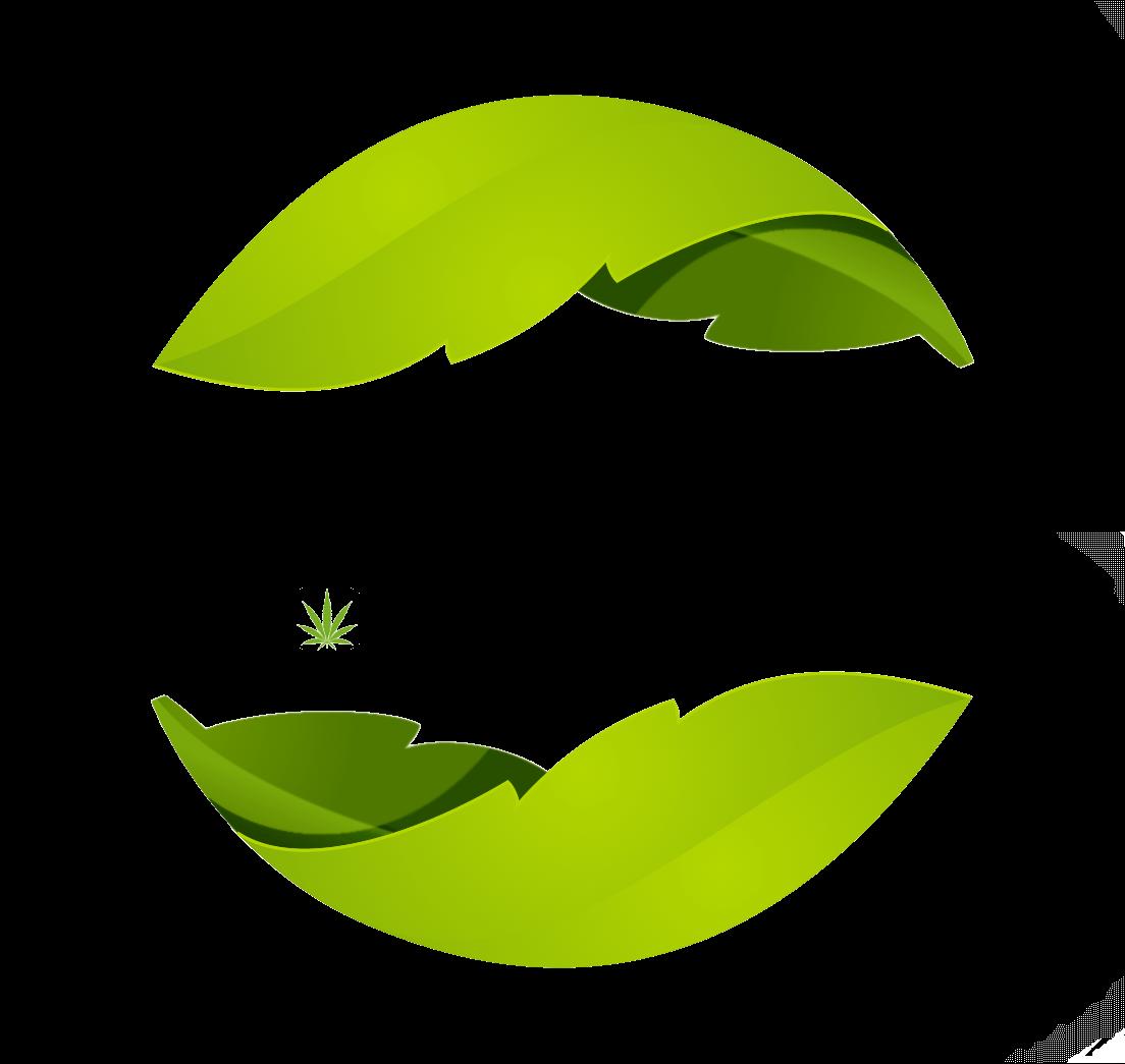new leaf botanicals logo ALPHACHANNEL (1